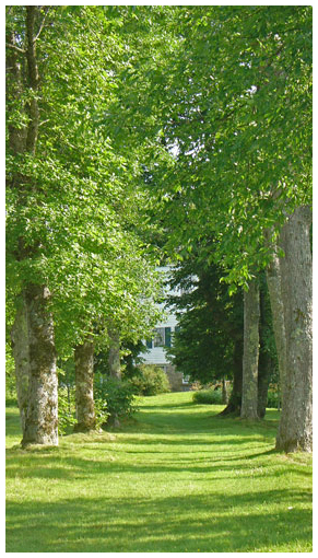 Allee at Uniacke Estate Museum Park