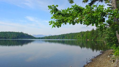 Lake Martha trail view- Uniacke Estate Museum Park